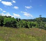 LOT 4 240 INLET RD,
