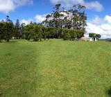 Flat and Gently North Sloping 1.60ha