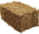 SMALL BALES  OF  BARLEY  STRAW OR  STANDARD  STRAW  OR  PEASTRAW  WANTED