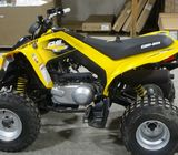 2019 can am 250