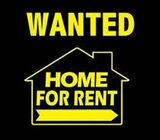 RENTAL WANTED NAPIER