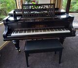 Musician's salon piano